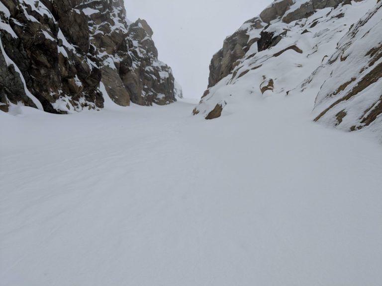 Flower Couloir Stem 1